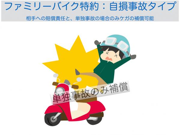 ファミリーバイク特約自損事故タイプ.001